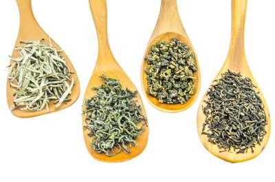 Tea Leaf Styles