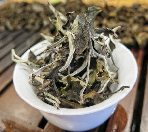 One Bud One Leaf White Tea