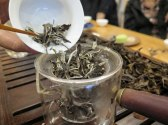 Wild White Tea: SHan Tuyet